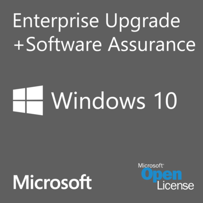 Microsoft Windows 10 Enterprise Single Upgrade