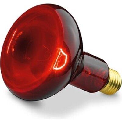 Аксесоар Beurer IL 11 Infrared bulb 100 W