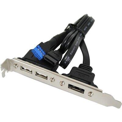 USB2.0x2 and ESATA Bracket, ASUS  14G000514500